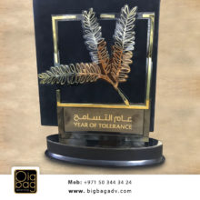 year of tolerance trophies